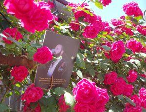 boek der liefde en wijsheid cover1