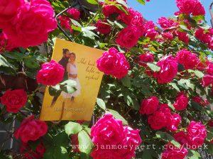 boek der liefde en wijsheid cover2
